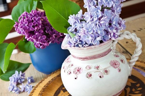 çiçekli odalar